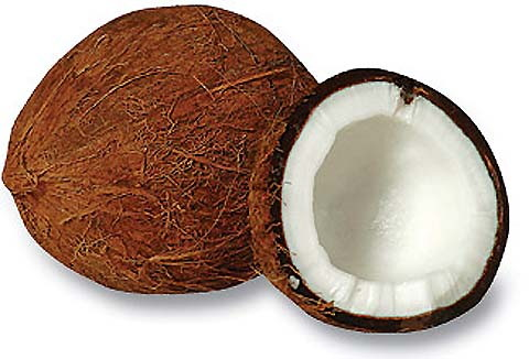 Coconut carbon fabric